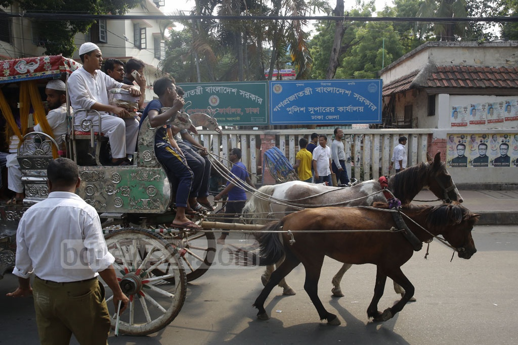 Horse carriages are still available for rides in Dhaka. A passenger needs to pay Tk 20 to 25 for a ride from Gulistan to Sadarghat. Photo: Mostafigur Rahman