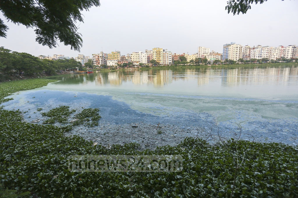 Pollution has turned the Gulshan Lake water into blue and green in some places. Photo: Mahmud Zaman Ovi