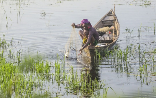 A man is fishing in the low-lying areas affected by floods in Dhaka's Keraniganj. Photo: Abdullah Al Momin