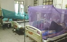 Dengue patients hospitalised in 24 hours drop to 607, lowest in a month