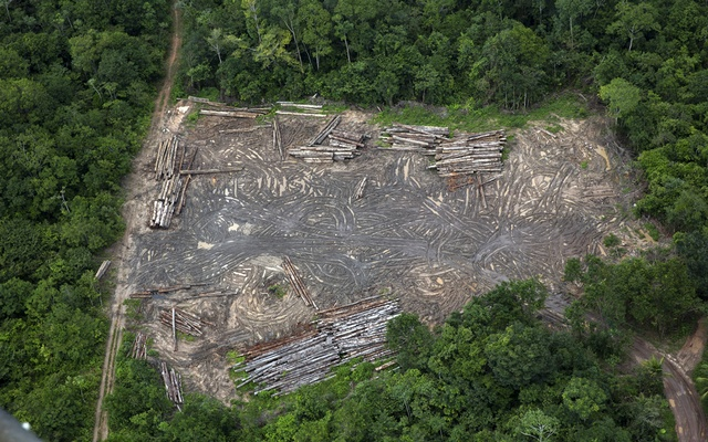 An aerial view of an illegal sawmill from a helicopter carrying members of the Specialised Inspection Group, a part of Brazil's environmental protection agency called Ibama, in the Alto Rio Guama Indigenous Territory in Brazil, Mar 24, 2017. Cutting down trees at the current rate in the Amazon could lead to runaway deforestation, environmentalists say. But President Jair Bolsonaro is sticking to his promise to curb enforcement. The New York Times