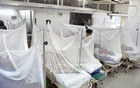 Bangladesh records over 41,000 dengue patients