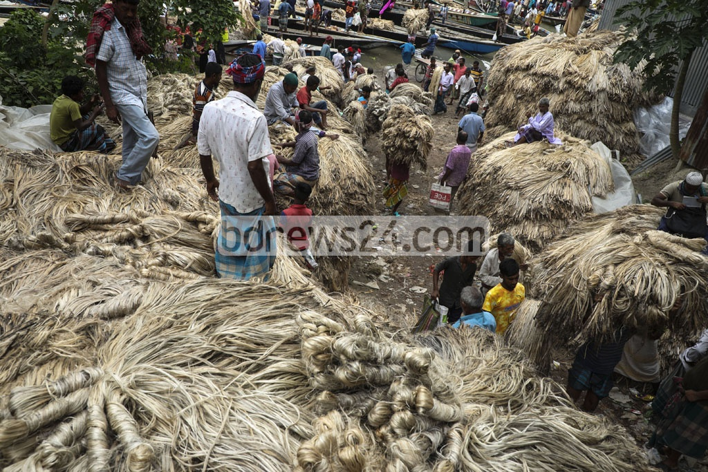 A snap of wholesale jute market at Ghior in Manikganj. Photo: Mostafigur Rahman