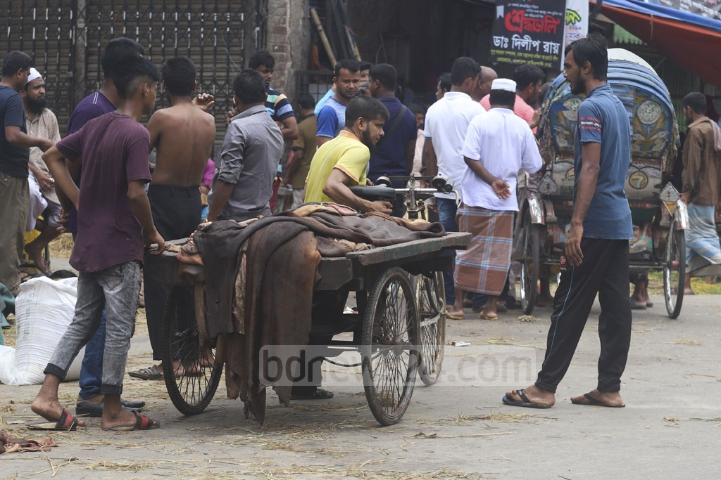 Traders gathering rawhide from different parts of Dhaka after the Korbani sacrifices on Monday. Photo: Abdullah Al Momin