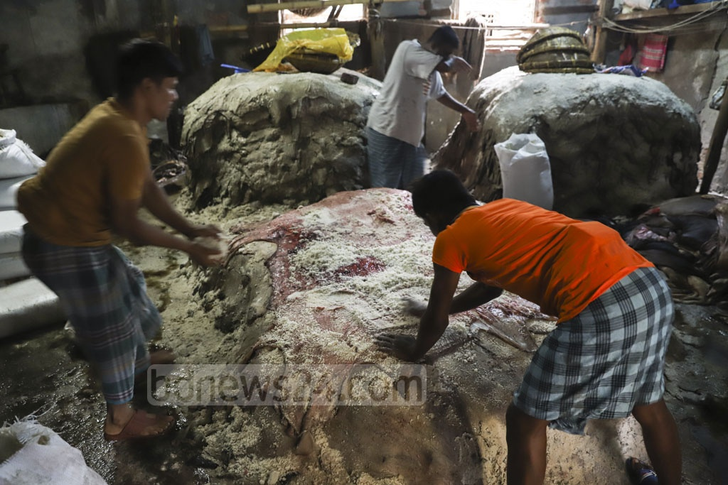 Workers applying salt on rawhides for preservation at Posta in Old Dhaka on Tuesday, a day after the Eid. Photo: Abdullah Al Momin