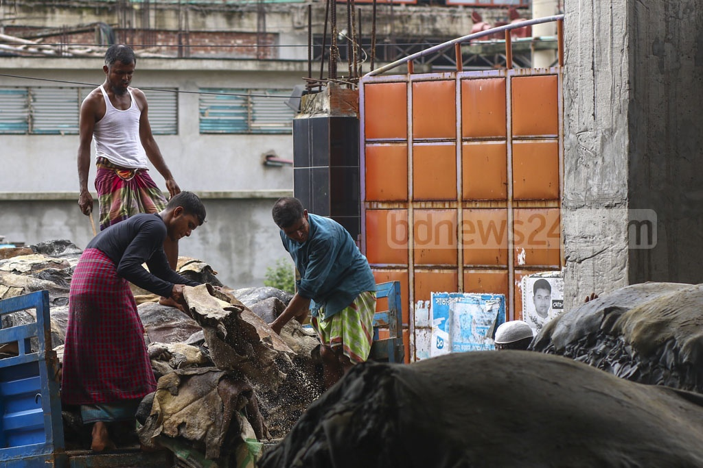 One or two tanneries are buying rawhide of cattle slaughtered on Eid-ul-Azha this year, but not like they did after the festival in previous years. Photo: Mahmud Zaman Ovi