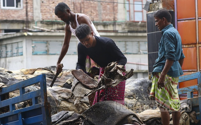 Workers offloading rawhide preserved with salt from a truck at a tannery in Savar on Friday. Photo: Mahmud Zaman Ovi