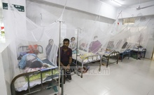 Patients with mosquito-borne viral dengue fever lying inside mosquito nets at a special ward of the Shaheed Suhrawardy Medical College Hospital in Dhaka on Sunday. Photo: Asif Mahmud Ove