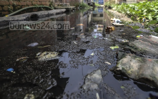 Mosquitoes breed merrily on waterlogged Haji Lal Mia Lane at North Muradpur in Dhaka's Kadamtali. This photo was clicked on Sunday as the situation continues for around three years. Photo: Abdullah Al Momin