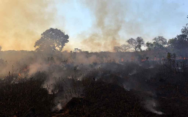 A fire burns a tract of the Amazon jungle in Agua Boa, Mato Grosso state, Brazil September 4, 2019. REUTERS
