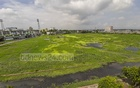 The outfield of Khan Shaheb Osman Ali Stadium in Narayanganj resembles an abandoned water body. Photo: Abdullah Al Momin