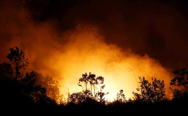 Trees and peatland are pictured during a fire in Palangka Raya, Central Kalimantan province, Indonesia, September 17, 2019. REUTERS