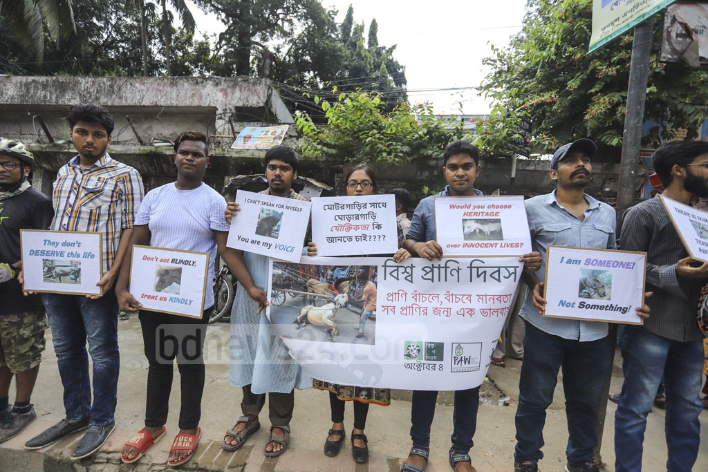 Animal rights activists stage a human-chain programme in front of the National Press Club on Friday on occassion of World Animal Day demanding the implementation of the Animal Welfare Act. Photo: Asif Mahmud Ove