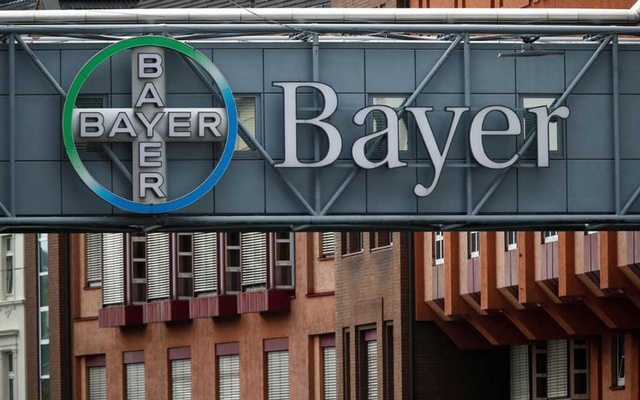 FILE PHOTO: A bridge is decorated with the logo of a Bayer AG, a German pharmaceutical and chemical maker in Wuppertal, Germany Aug 9, 2019. REUTERS