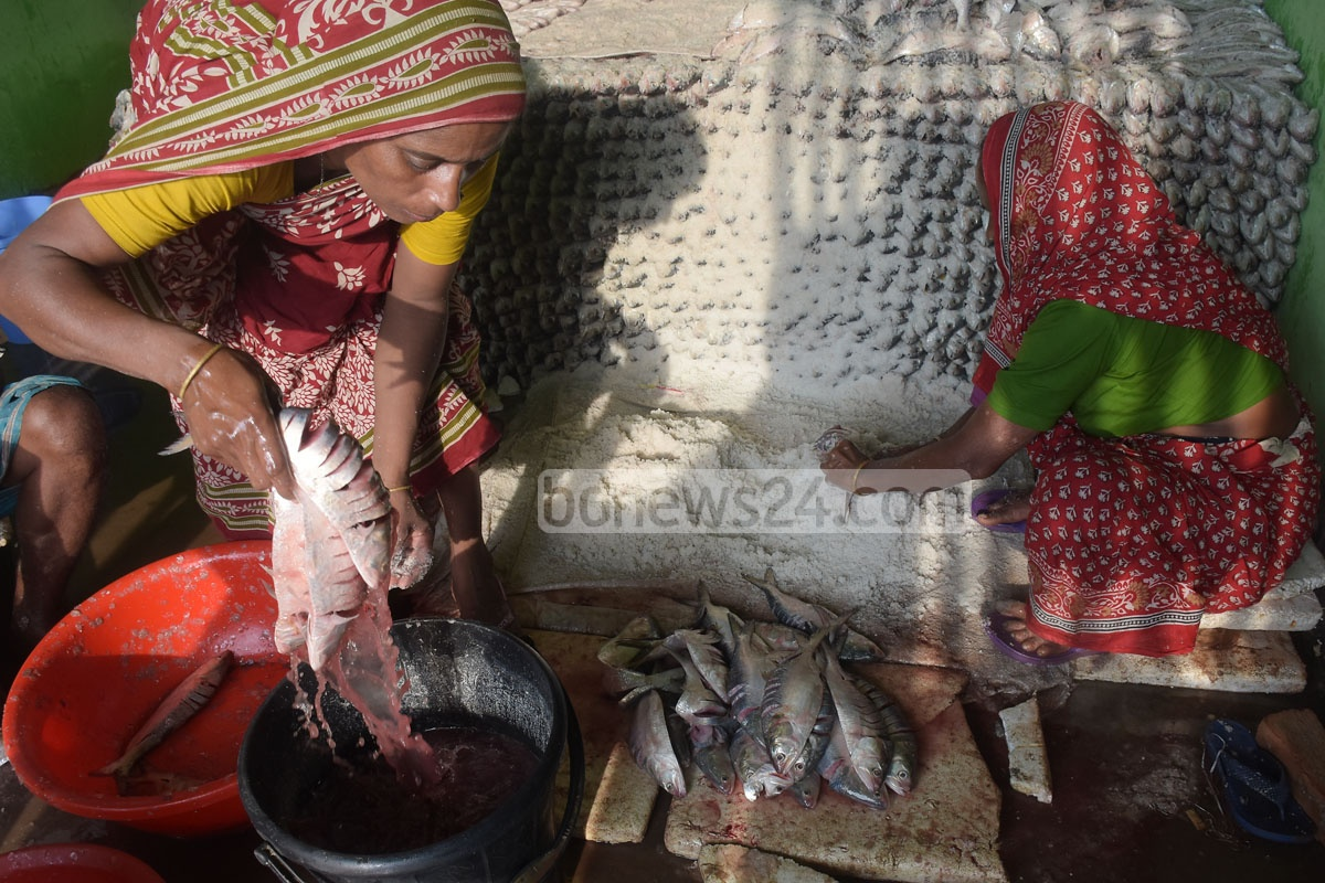 They then wash the fishes before applying the salt to preserve them. Photo: Suman Babu