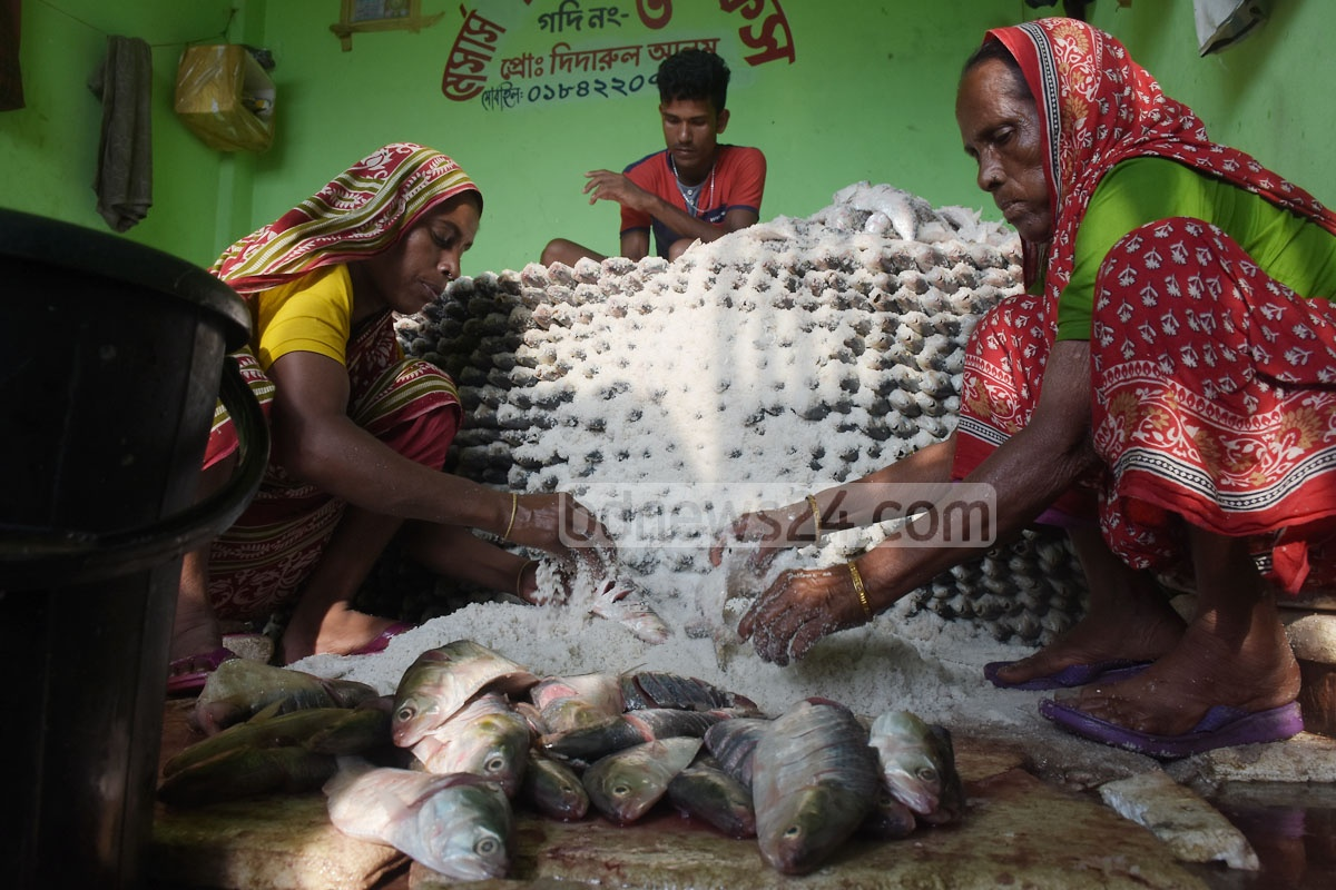 At the end, the fishes are smothered in salt as a means to preserve them. Photo: Suman Babu