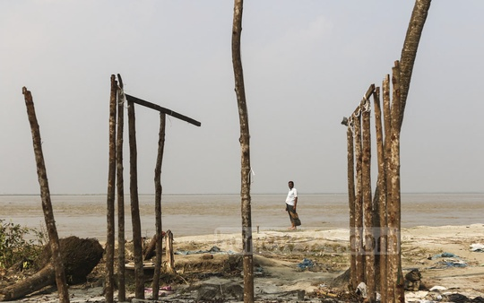 Erosion along the banks of the Padma River has claimed homes one after another at Kedarpur union in Shariatpur's Naria Upazila. Photo clicked on Sunday. Photo: Mahmud Zaman Ovi