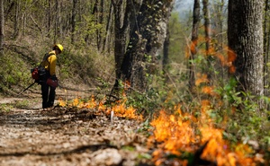 The perimeter of a prescribed burn area is set on Brawley Mountain near Blue Ridge in northern Georgia, on Apr 23, 2019. The Kincade fire is burning more than 10,000 acres in California. Other areas of the country are experiencing drought so understanding fire is becoming ever more important. The New York Times