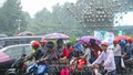 A pillion rider carries an umbrella on a motorcycle at Karwan Bazar in Dhaka on Saturday as rains hit the capital under the influence of a cyclone. Photo: Mahmud Zaman Ovi