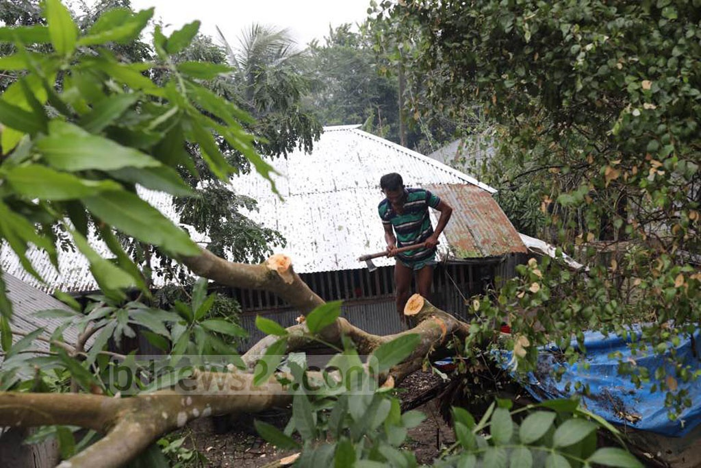 A trail of destruction lleft behind by Cyclone Bulbul was found on the way to Khulna's Dacope Upazila. Photo: Mostafigur Rahman