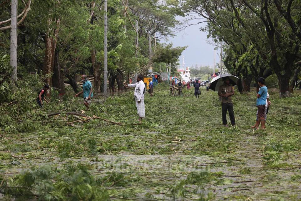 The cyclone wreaked havoc on both sides of Mongla-Bagerhat Highway. Photo: Mostafigur Rahman
