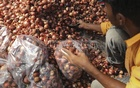 India to lift ban on onion export as prices 'stabilise'