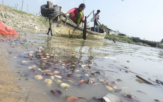 Children pick up the rotten onions discarded by traders from the Karnaphuli River in Chattogram. Photo: Suman Babu
