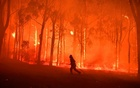 The world burns all year. Are there enough planes to douse the flames?