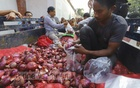TCB's onions seized in Chattogram auctioned at Tk 91 per kg