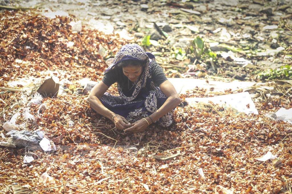 A woman sifts through a pile of onions dumped in the Burigana River by wholesalers in Dhaka's Shyambazar. Photo: Asif Mahmud Ove