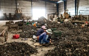 Foreign workers sort through piles of shredded e-waste on the premises of New Sky Metal in Phanom Sarakham, Thailand on Sept 13, 2019. The e-waste industry is booming in Southeast Asia and despite a ban on imports, Thailand is a centre of the business, frightening residents worried for their health. The New York Times