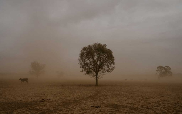 A dust storm near Trangie in New South Wales, Australia, Oct 8, 2019. The New York Times