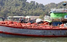 Cargo ships carrying onions imported from Myanmar awaiting clearance at the Teknaf port. Photo: Mostafigur Rahman