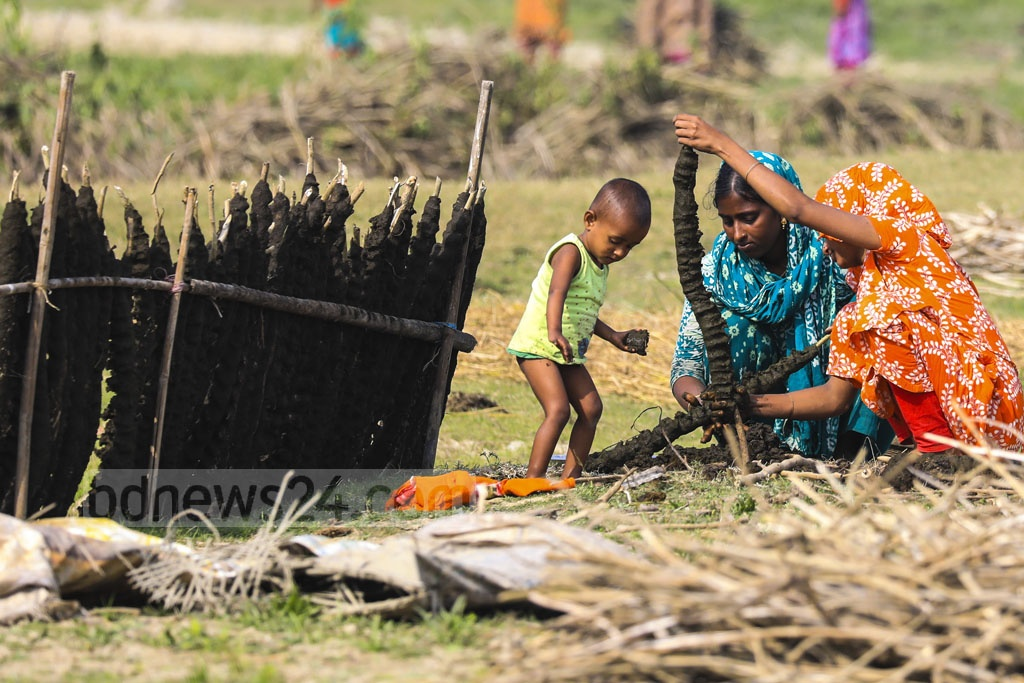 Women prepare cow-dung fuel in Netrokona's Mohanganj Upazila. Photo: Mostafigur Rahman