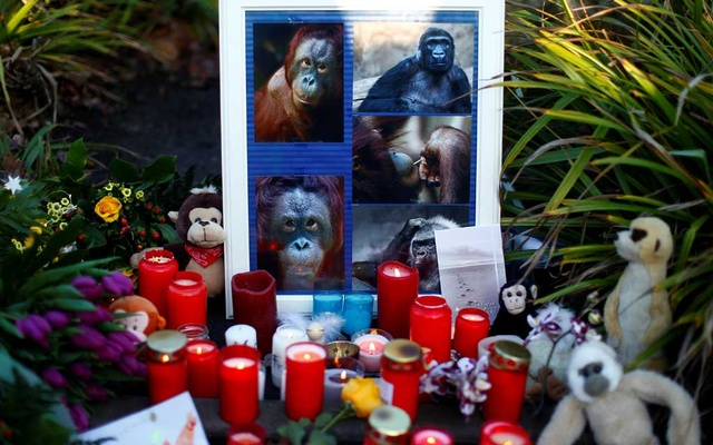 Candles and flowers are pictured outside the zoo of Krefeld after a monkey house burned down in Krefeld, Germany, Jan 1, 2020. REUTERS