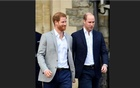 UK princes William and Harry denounce 'offensive' newspaper report