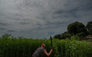 Guillermo Loreto, 19, working on his grandmother's bean field in Parmana, a fishing village on the banks of the Orinoco River in central Venezuela, on Dec 3, 2019. The New York Times