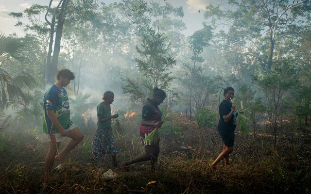 Violet Lawson, second from left, and others in her family chew on green sand palm fronds for hydration while out burning brush, near Cooinda, in Australia's Northern Territory, Jan 15, 2020. Indigenous fire-prevention techniques that have sharply cut destructive bushfires in Australia are drawing new attention. (Matthew Abbott/The New York Times)
