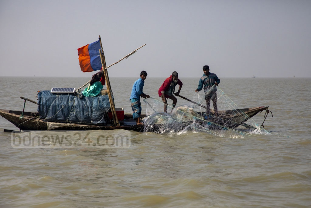 Fishermen casting a net to catch hilsa on the Meghna River. Hundreds of hilsa fishermen in the coastal areas use the fishing net in violation the rules prescribed the fisheries department. Photo: Mostafigur Rahman