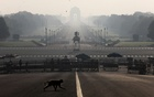A monkey crosses the road near India's Presidential Palace during a 14-hour long curfew to limit the spreading of coronavirus disease (COVID-19) in the country, New Delhi, India, March 22, 2020.