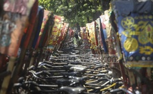 Rows of parked rickshaws lining a road in Dhaka's Tejgaon amid a nationwide shutdown of transport system in a bid to limit the spread of the coronavirus. Photo: Asif Mahmud Ove