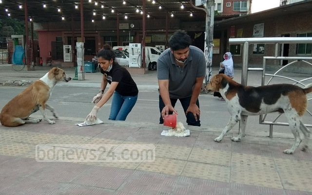 They also give food to around 400 dogs in areas extending from Old Dhaka to Uttara.