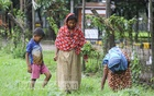 Rokeya and Bobita, two women from Dhaka's Khilkhet, collecting edible plants from a place next to Airport Road as they failed to get aid after travelling to Shewra on Thursday amid the coronavirus lockdown. Photo: Asif Mahmud Ove