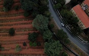 Newly dug graves are seen at Sao Luiz cemetery where the administration says they recently dug 3.000 new graves amid the outbreak of the coronavirus disease (COVID-19), in Sao Paulo, Brazil, June 4, 2020. REUTERS