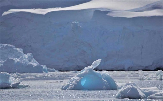 An iceberg floats along the water, close to Fournier Bay, Antarctica, February 3, 2020 Reuters