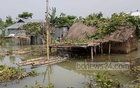 As houses are getting submerged, people have taken shelter on rooftops in Gaburjan village in Hatia Union of Kurigram's Ulipur Upazila.