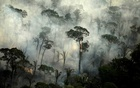 Smoke billows from a fire in an area of the Amazon rainforest near Porto Velho, Rondonia State, Brazil, Sept 10, 2019. REUTERS/FILE