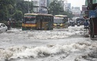 Waterlogging in the capital's Mirpur after heavy overnight rain disrupts traffic on Monday.