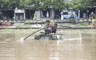 Two children crossing a waterlogged field next to the railway tracks in Dhaka's Jurain on a raft made of thermocol sheets on Wednesday.