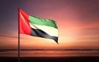 The UAE flag.   thepawprintdaa.com
